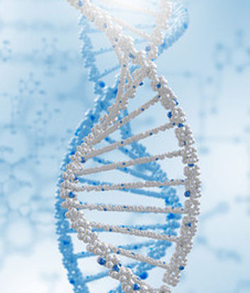 Pārtraukušās grūtniecības materiāla ģenētiskas izmeklēšanas rezultāti